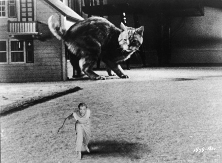 Williams Is 'The Incredible Shrinking Man'